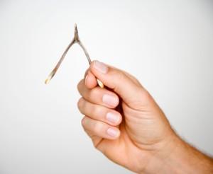 Hand Holding Wishbone
